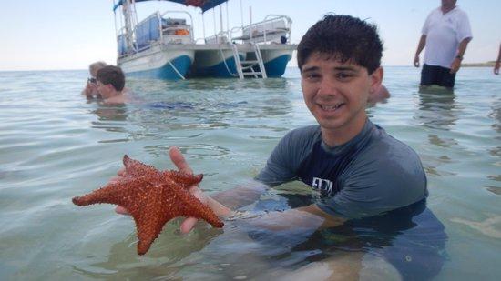 Six Senses Cayman Adventures : Five-pointed starfish