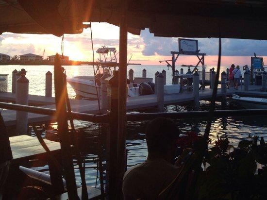 Island Fish Company : Great view