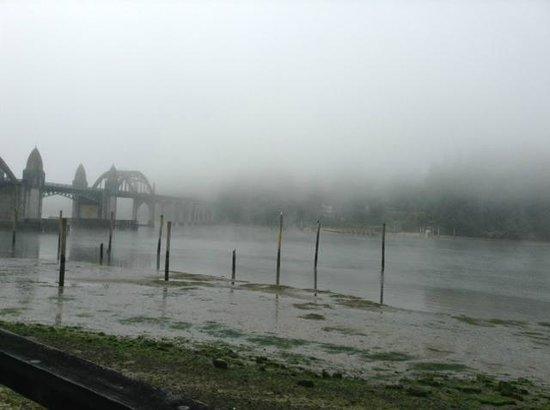River House Inn: Morning fog from deck