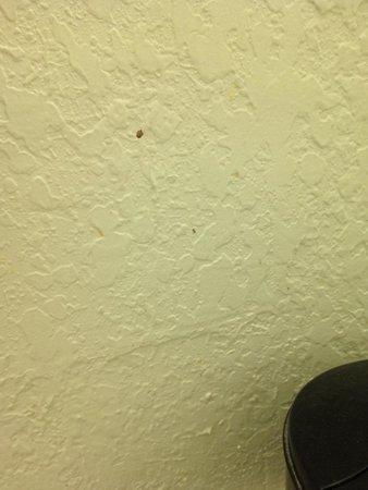 Rodeway Inn: Blood on wall