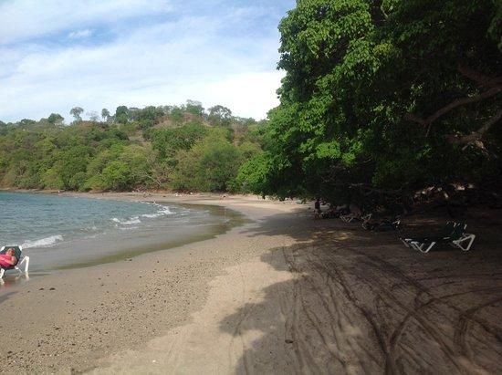 Occidental Papagayo - Adults only: La playa del hotel