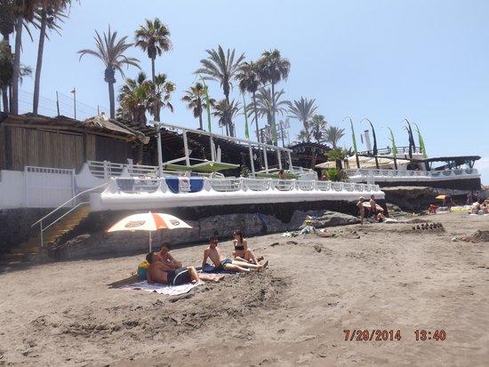 Gran Oasis Resort: Monkey Beach