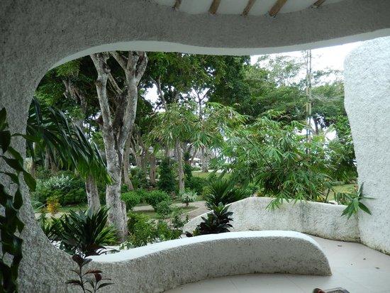 Ocean Village Club: View of the garden
