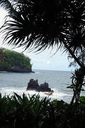 Hawaii Tropical Botanical Garden : Ocean view