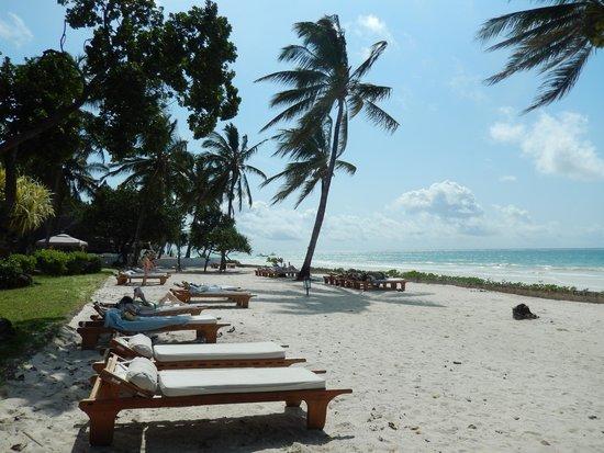 Ocean Village Club: Beach