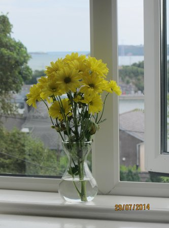 Robin Hill Guesthouse: Flowers on the Window-sill