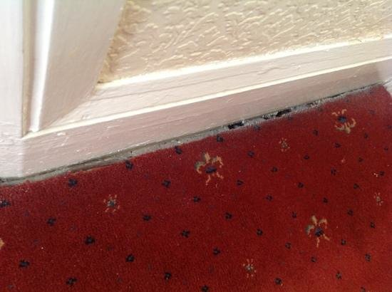 North Stafford Hotel: holes carpeted over