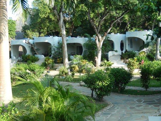 Ocean Village Club: Rooms