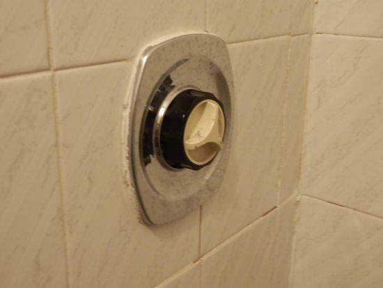 Parisienne Hotel: Shower