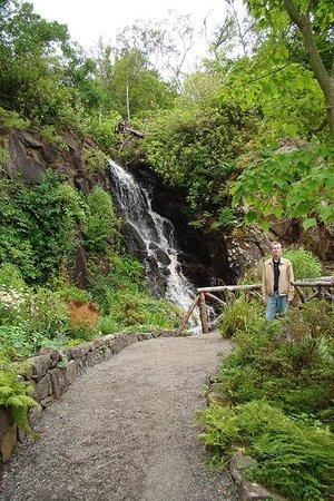 Dunvegan Castle & Gardens: Waterfall