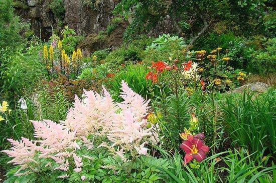 Dunvegan Castle & Gardens: The water garden