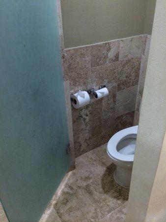Hilton Puerto Vallarta Resort: Toilet with door so close u can't close it