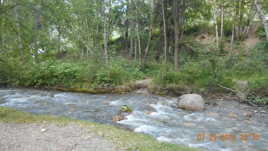 Canyon RV Resort: Sinclair Creek (behind our site)