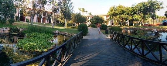 Blau Colonia Sant Jordi Resort & Spa: vialetto...