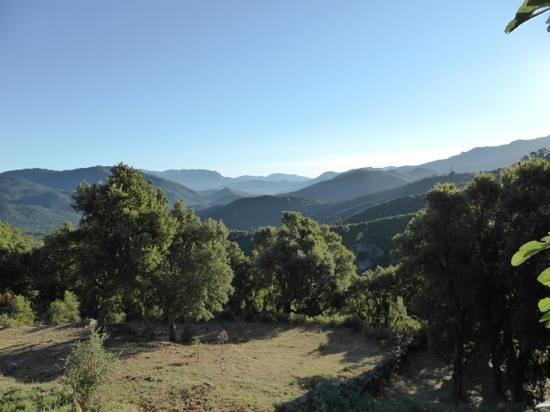 A Pianella: La vue depuis la maison