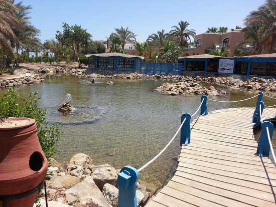 Labranda Club Paradisio Hotel El Gouna : The infrastructure of the hotel on the way to the relaxing SPA