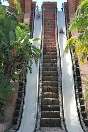Atlantis - Harborside Resort : The Challenger Waterslide