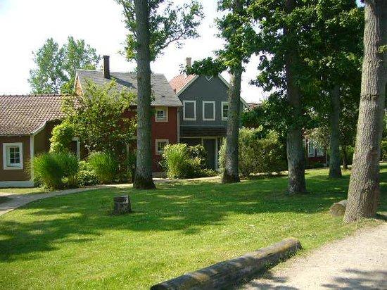Center Parcs Le Lac d'Ailette : le calme absolu (pas de voitures !)