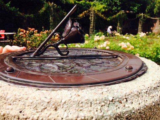 Cockington Country Park: Beautiful gardens