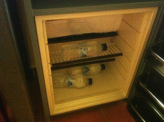 Mare Nostrum Thalasso Hotel : The desolating fridge