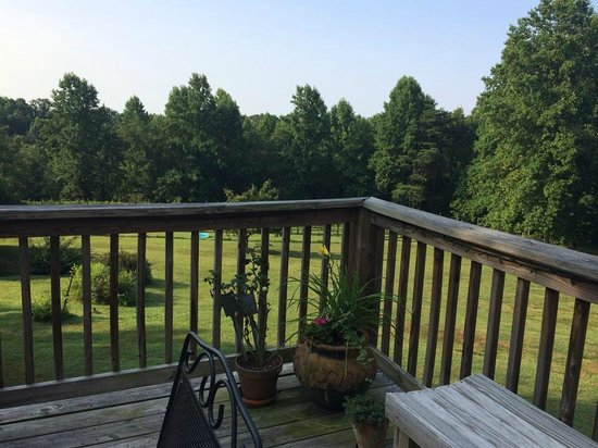 Arcady Vineyard Bed & Breakfast: View from deck