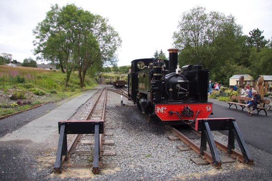 Vale of Rheidol Railway: Duty break
