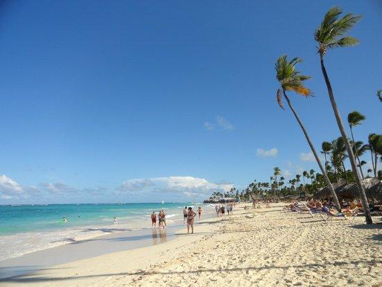 Iberostar Punta Cana: Belleza total!!!