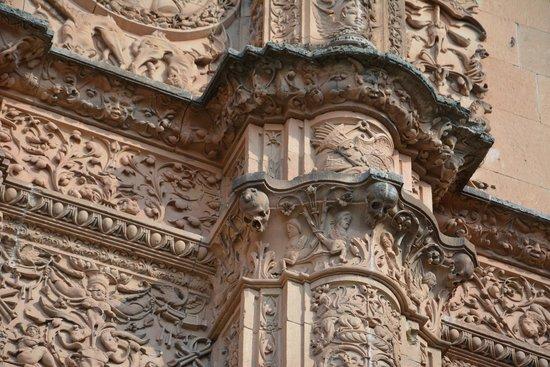 Universidad de Salamanca: Detalle de la fachada