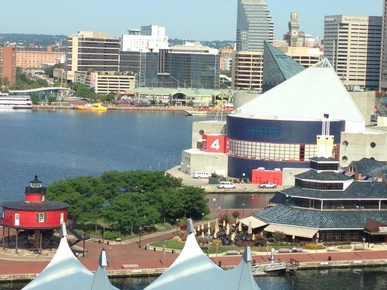 Baltimore Marriott Waterfront: Harbor View of Pier 5 and Pier 4