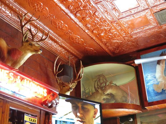 Mint Bar : Love this ceiling