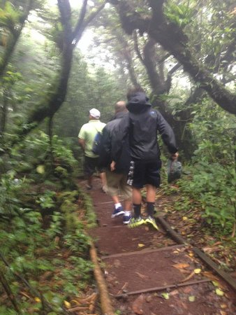 Mombacho Volcano: hiking the crater trail