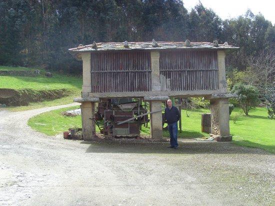 Pumariño: exterior