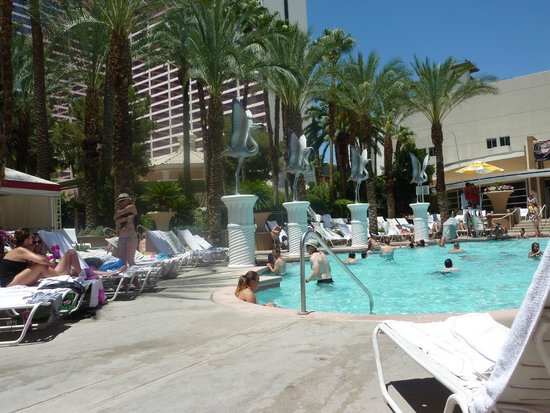 Flamingo Las Vegas Hotel La Piscine Under 21