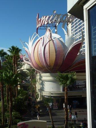 Flamingo Las Vegas Hotel & Casino: L'entrée