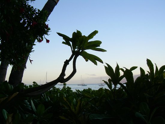 Makai Inn: Another view from lanai. Lanai in the background