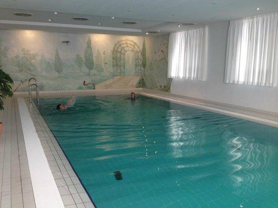 Hotel Am Moosfeld: Pool