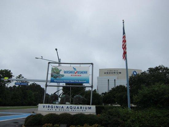 Entrance Picture Of Virginia Aquarium Marine Science