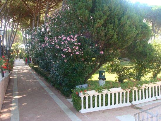 Park Hotel Marinetta: viale ristorante