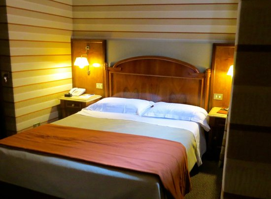 Hotel Mascagni : Our room