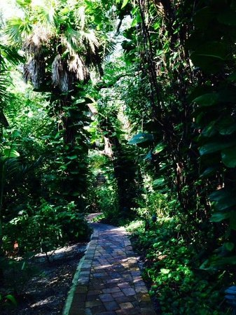 Hippocrates Health Institute: One of the many walking paths inside the property