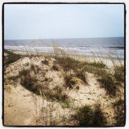 Hampton Inn & Suites Jekyll Island : Sand dunes