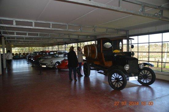 Bouza Bodega Boutique: Coleção de carros antigos