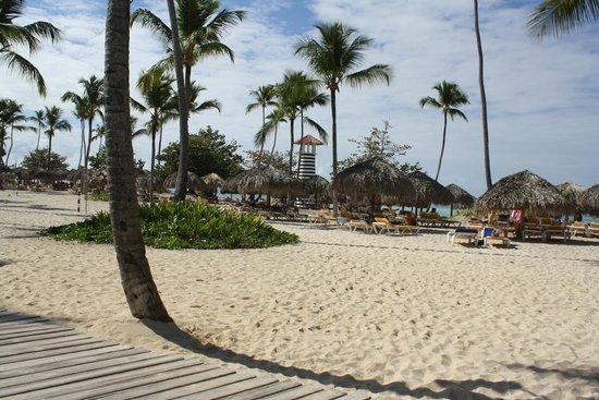 Iberostar Hacienda Dominicus : playa