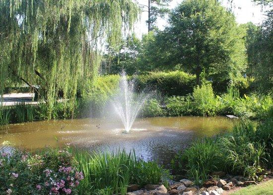 fountain, Irmo Town Park, June 2014