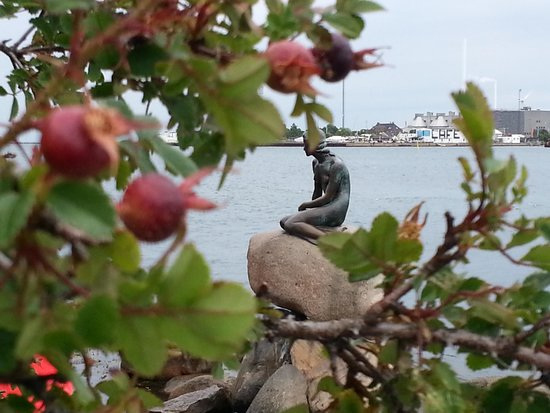 The Little Mermaid (Den Lille Havfrue): Trust me, there's a HOARD of people behind that bush!