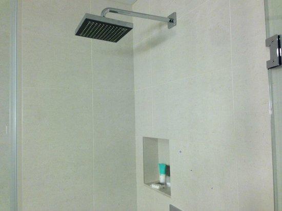Hyatt Regency Indian Wells Resort & Spa: Shower
