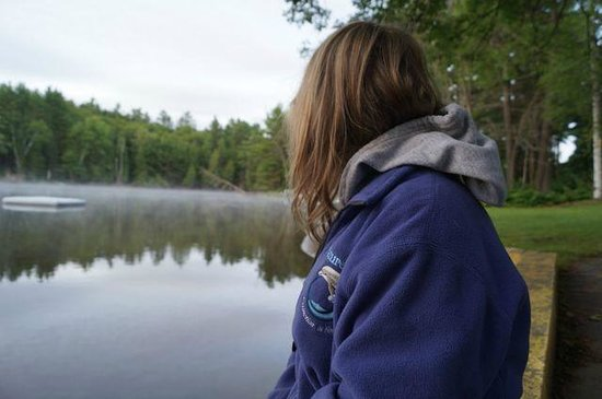 Safe Haven Cottage Resort : Misty morning watching the loon and great blue heron fish
