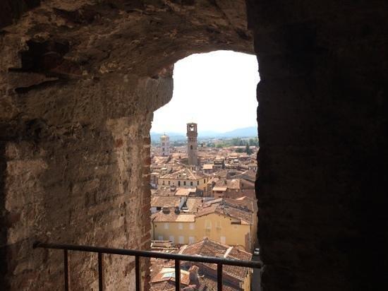 Guinigi Tower: On the way up.