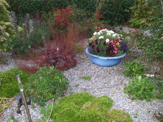 Mount Edward Lodge: Maureen's garden