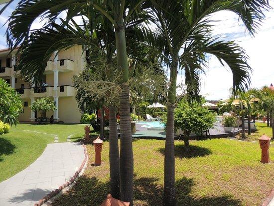 Phu Thinh Boutique Resort & Spa: Jardin et piscine (derrière l'hotel)